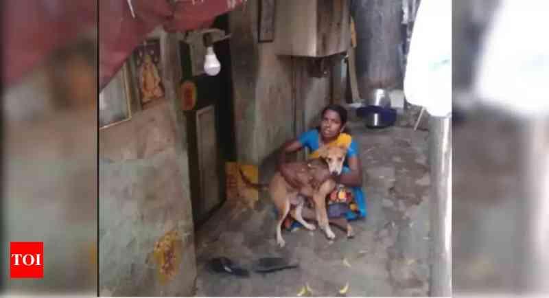 Isolamento: mulher come somente uma vez ao dia e com o restante alimenta seus 13 cães