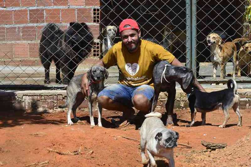 Na chácara onde Jaciel Dias mora, 134 cães aguardam para serem adotados: mais de 40 resgatados só durante a pandemia (foto: Marcelo Ferreira/CB/D.A Press)