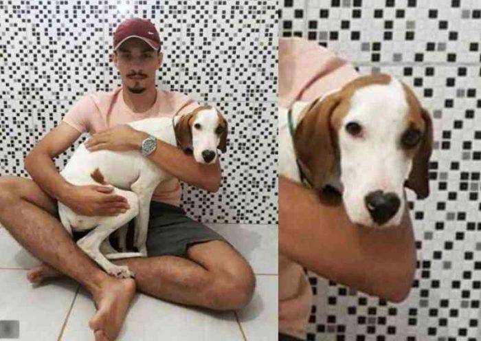 Estudante adota cão que salvou com parada cardíaca na rua: vídeo