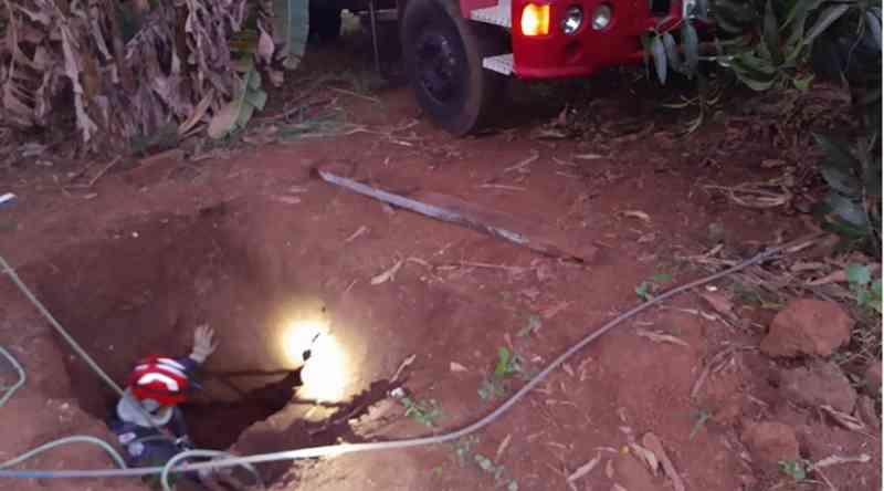 Bombeiros socorrem cavalo preso em buraco de 3 metros em chácara às margens da MG-427