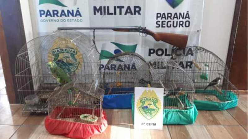 Um homem foi preso por maus-tratos a aves em Imbituva, PR