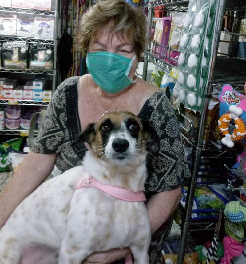 Sofia e a cachorrinha Sorriso, adotada na Suipa — Foto: Sofia Gilda Wajnsztok/ Arquivo Pessoal
