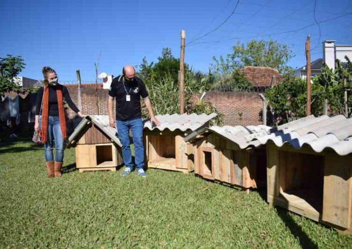 Presos constroem casas para cães abandonados em Arroio do Meio, RS