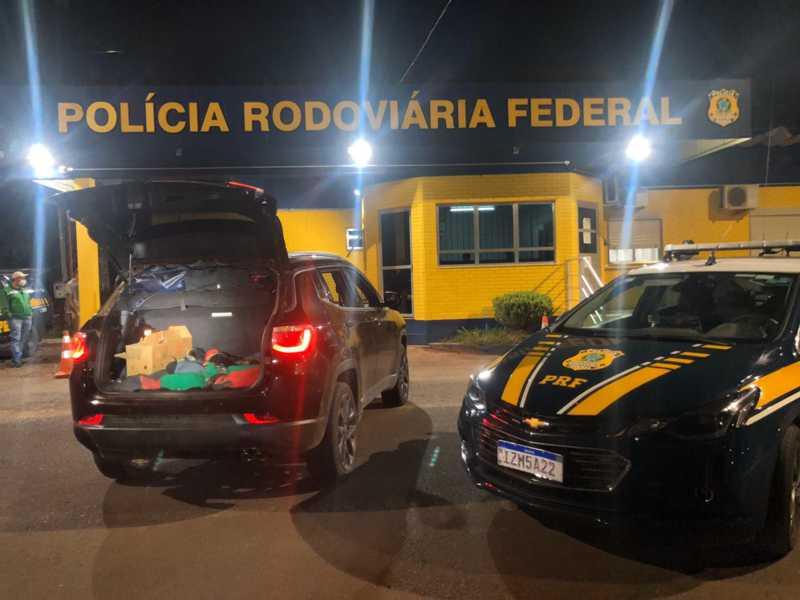 Animais estavam amarrados e amontoados em porta malas de veículo com placas do Paraná. Crédito: Divulgação
