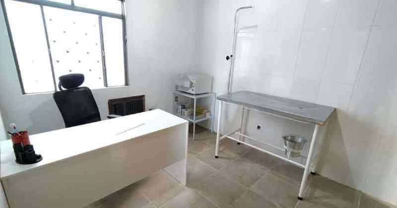 Covid-19 adia projeto de clínica veterinária para famílias de baixa renda em Porto Alegre, RS