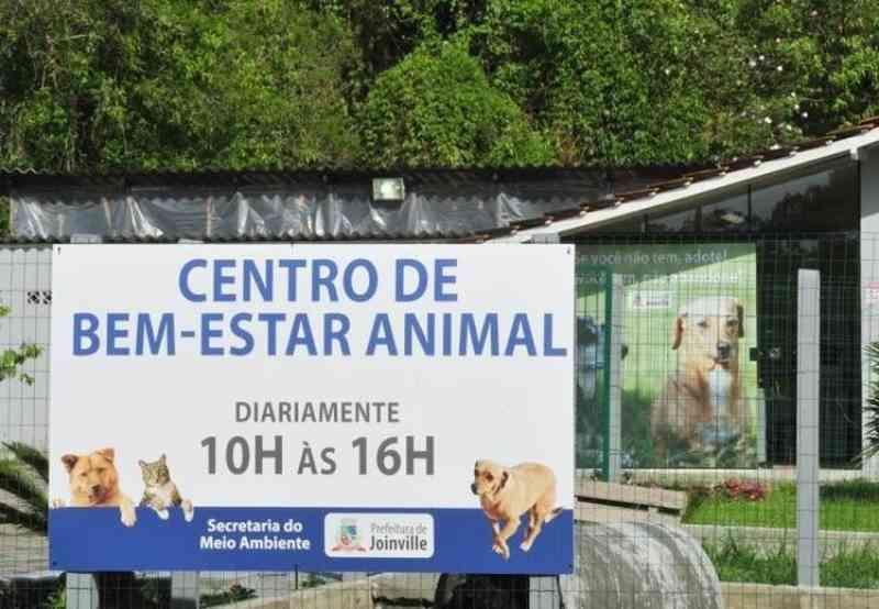 Centro de Bem-estar Animal suspende novos atendimentos em Joinville, SC