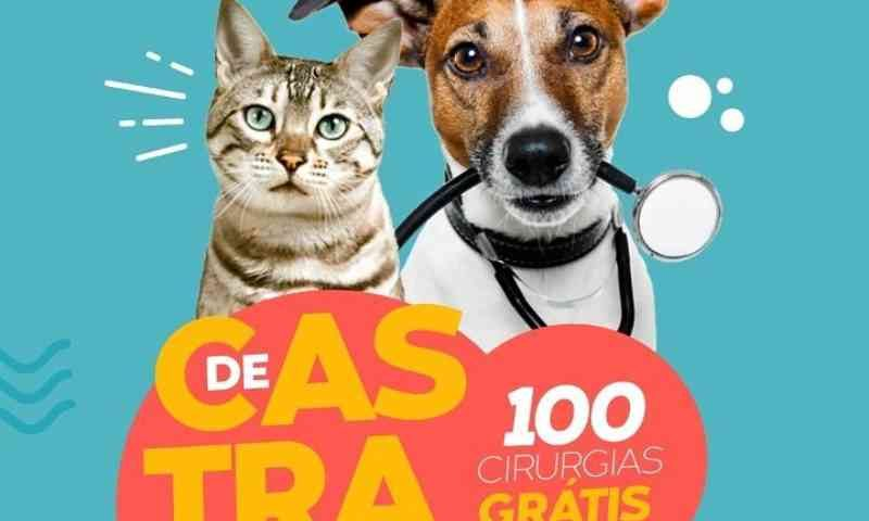 ONG Animais Amigos doa 100 castrações gratuitas para comunidade carente de Estância, SE