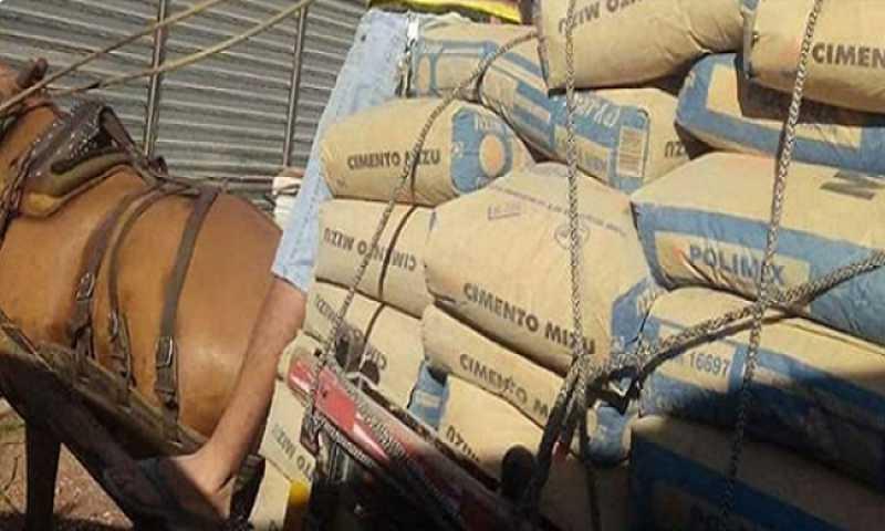 Carroceiro forçou cavalo a transportar 1 tonelada de cimento em Itabaiana, SE