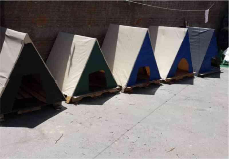 Casal de Franca (SP) produz casinhas de material reciclável para cães de rua