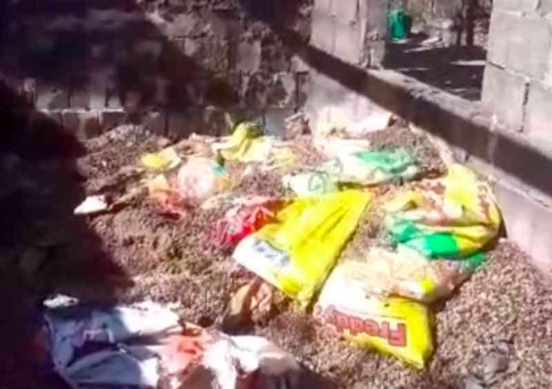 Abrigo de cães é incendiado em Mauá (SP) e dois animais morrem