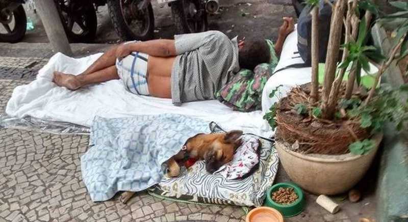 Ração doada será destinada a cachorros de moradores de rua. Reprodução/Facebook