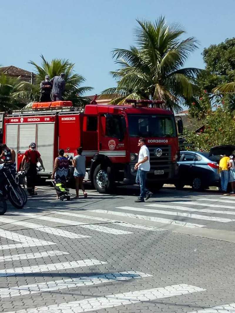 Animal foi resgatado pela equipe do Corpo de Bombeiros em Cubatão, SP — Foto: Reprodução/Cubatão News