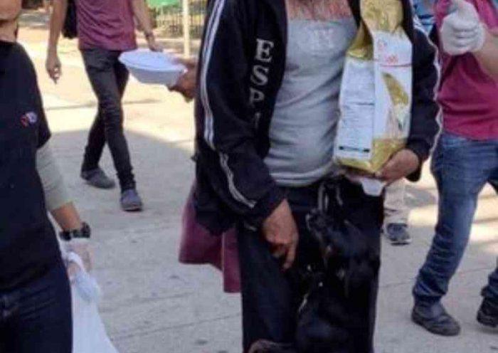 Empresa doa alimentos a cães de moradores de rua em São Paulo