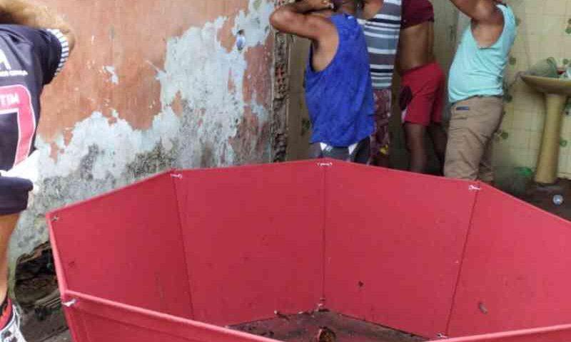 Trio é preso em rinha de galo em Penedo, AL