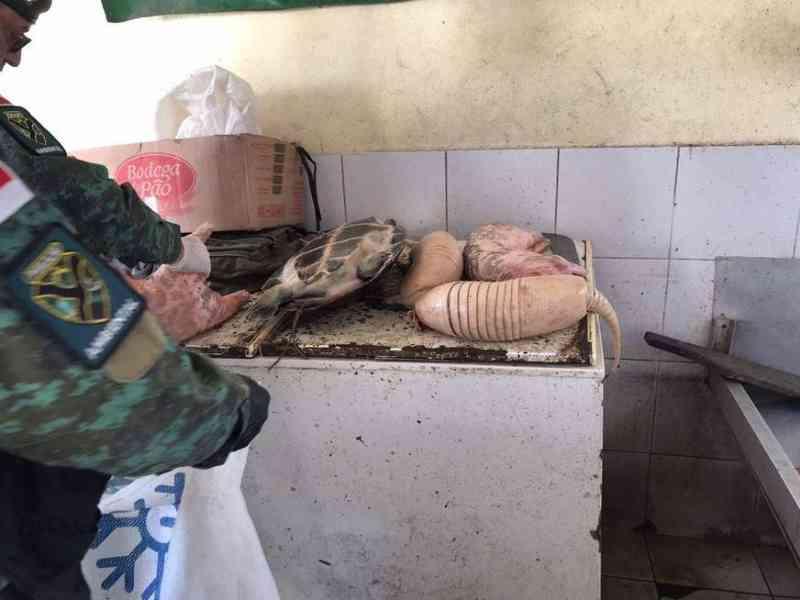 Polícia apreende carne de animais silvestres no Porto da Ceasa, em Manaus, AM