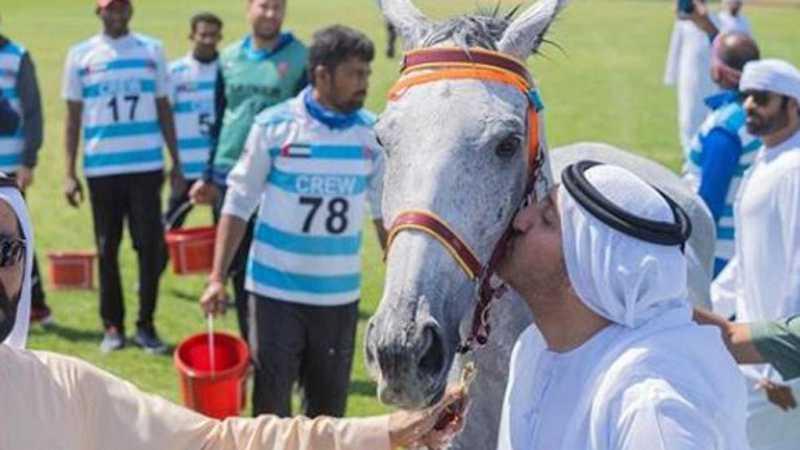 O cavaleiro emiradense Abdul Aziz Bin Faisal Al QasimiInstagram