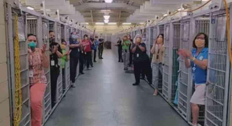Abrigo de cães nos EUA fica vazio pela 1ª vez com alta demanda de adoções