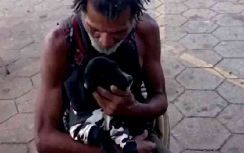 Casal de namorados se comove com cãozinho de morador de rua e doa agasalho pet; vídeo