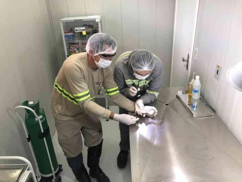 Juruti (PA) ganha Centro de Reabilitação de Animais Silvestres no Dia Mundial do Meio Ambiente