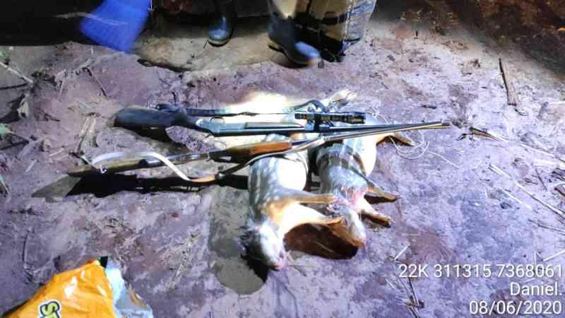 Dupla é presa e multada em R$ 10 mil por caçar pacas no PR