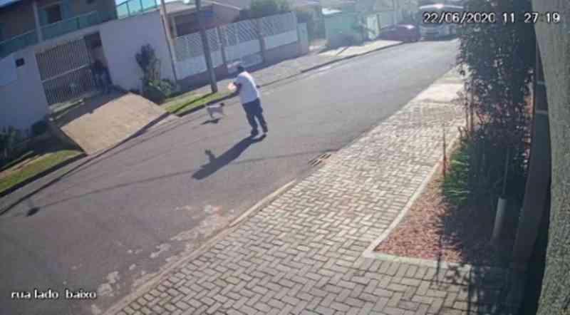 Homem saca arma e mata cachorro no meio da rua no PR; vídeo