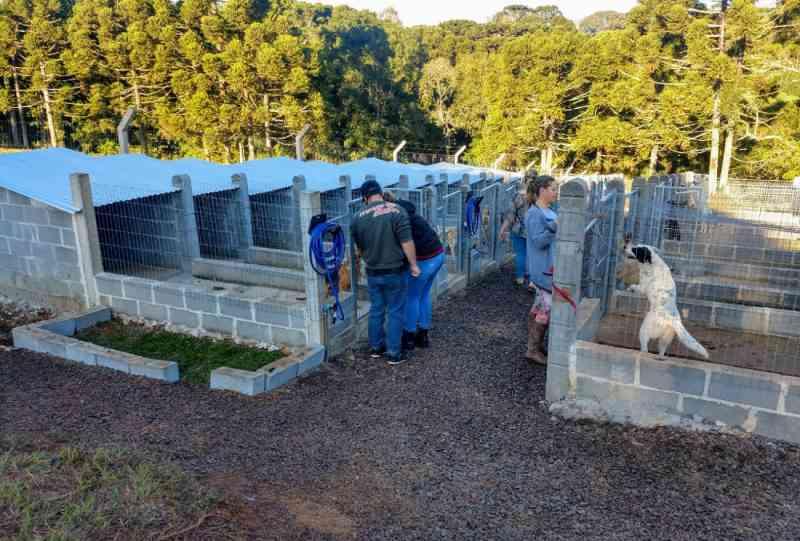 Prefeitura de Xanxerê (SC) conhece projeto de lar temporário de animais no RS