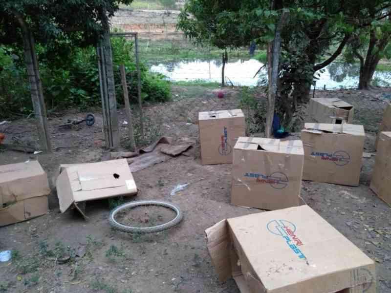 Grupo detido por organizar rinha de galos é multado em mais de R$ 430 mil