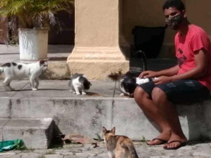 Jonathan Ryan, 14 anos, e seu amor aos bichos: ele realiza campanha para conseguir dinheiro para castrar os gatos que 'moram' no Cemitério de São José, no Trapiche. FOTO: CORTESIA À GAZETAWEB
