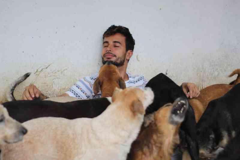 Abrigos de animais em Fortaleza (CE) sofrem queda de doações e sentem efeitos da crise durante a pandemia