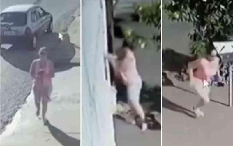 Mulher joga cachorro por grade de casa e sai correndo, em Anápolis, GO; vídeo