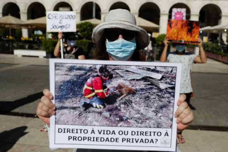 Cerca de cem pessoas manifestam-se em Lisboa pelos animais de Santo Tirso