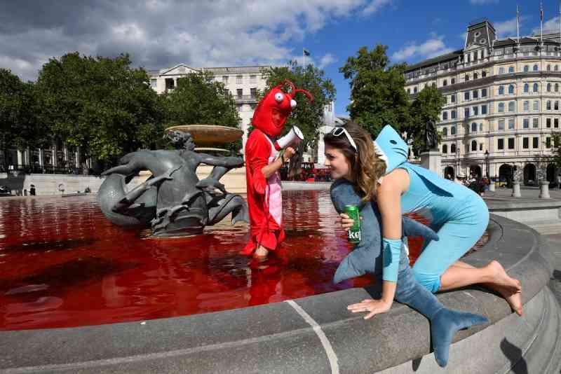 Manifestantes de direitos animais tingem fontes na Praça Trafalgar de Londres
