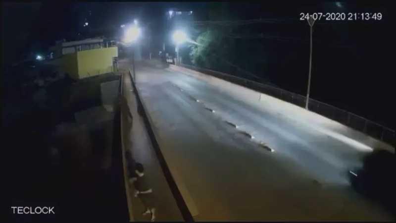 Câmera de segurança flagra pessoa arremessando cachorro de ponte em Brumadinho, MG