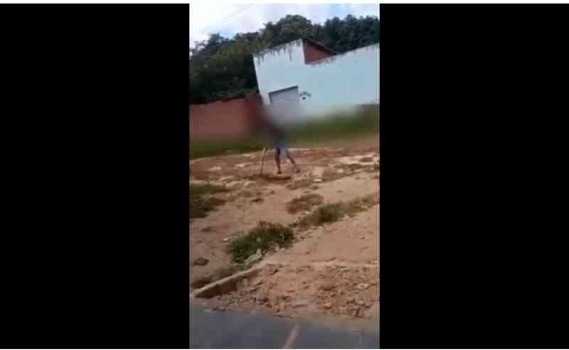 Vídeo: homem é flagrado matando cachorro a pauladas em cidade do Piauí