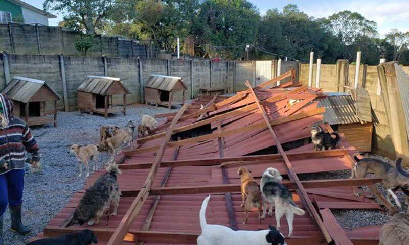 Uma das ONGs beneficiadas foi destruída pelo vendaval registrado no início de julho no Paraná — Foto: Divulgação