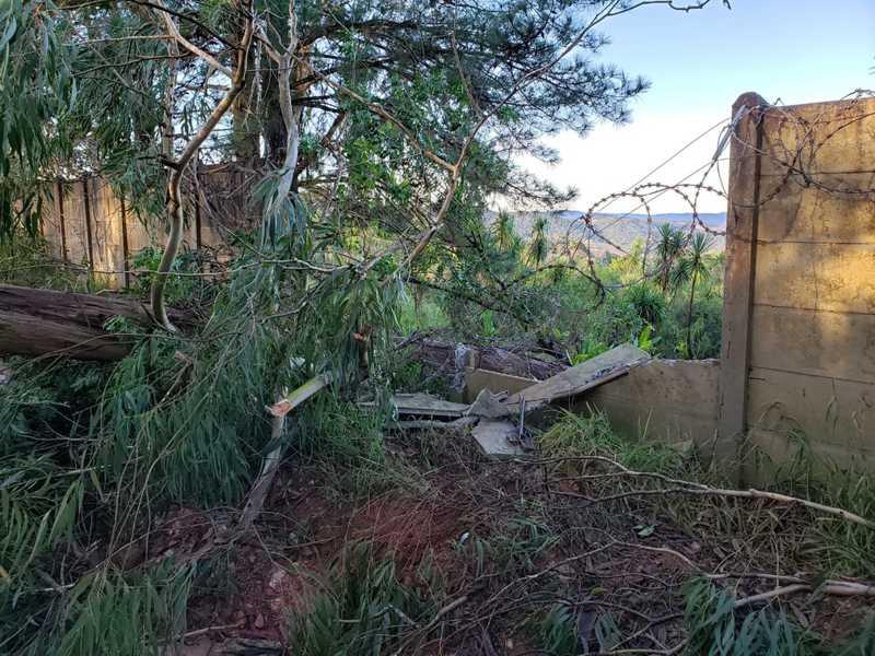 Temporal causou prejuízos em um abrigo de cães em Campo Magro, na Região Metropolitana de Curitiba — Foto: Divulgação