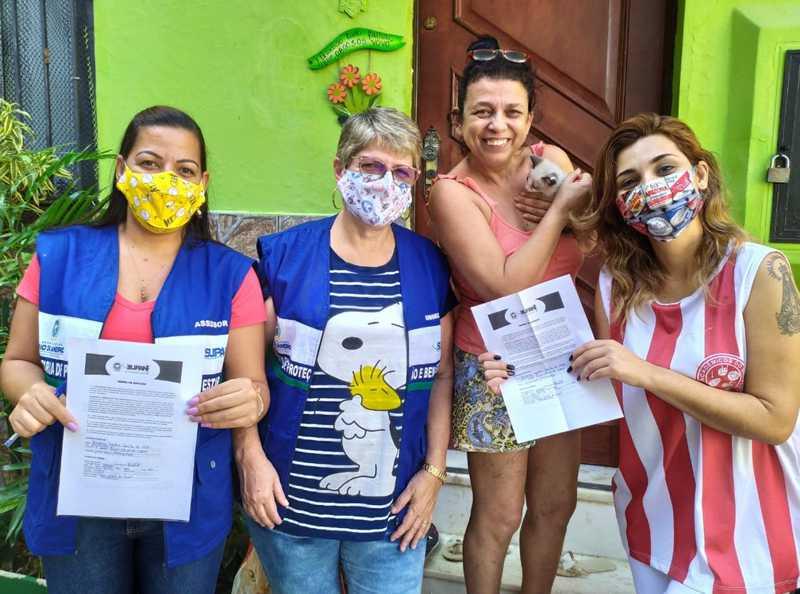 Após serem resgatados, filhotes de gatos abandonados ganham novos lares na Tijuca e em Maricá, no RJ