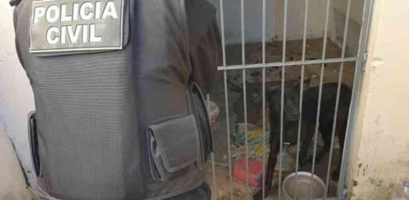 Polícia Civil resgata cão abandonado dentro de uma cela no bairro Mato Grande, em Canoas, RS