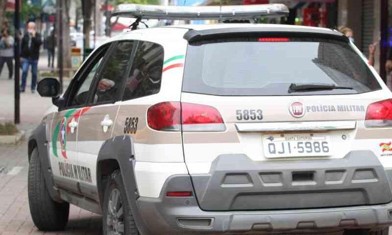 Após denúncias, PM fecha rinha de galo em São Martinho (SC) e encontra 38 animais