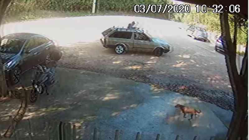 Homem que abandonou cachorro no DEBEA em Jundiaí (SP) pode responder processo
