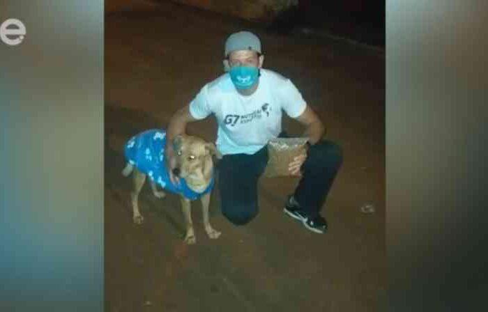 Cachorros de rua recebem ração e roupinhas em Limeira, SP