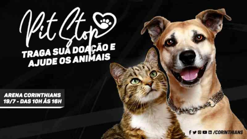Corinthians organiza ação na arena para arrecadação de ração para animais de rua