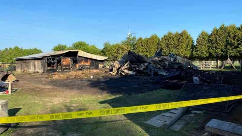 Incêndio em celeiro causa mortes em santuário de animais de fazenda perto de Chatham-Kent, no Canadá