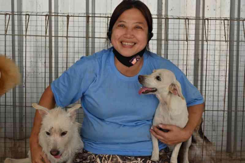 Médica indonésia resgata cães abandonados durante a pandemia