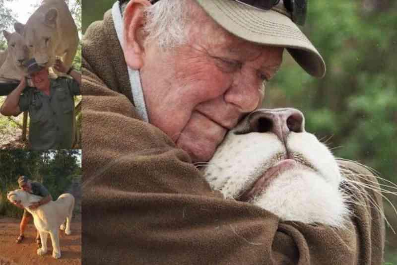 Tutor de leoas brancas é atacado e morto durante passeio com animais