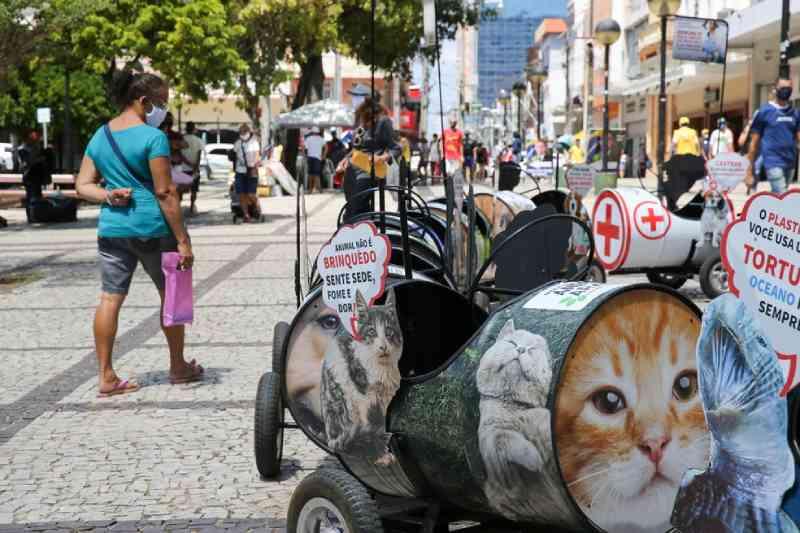 Com vagões informativos, projeto usa 'trenzinho' para conscientizar sobre abandono animal em Fortaleza, CE