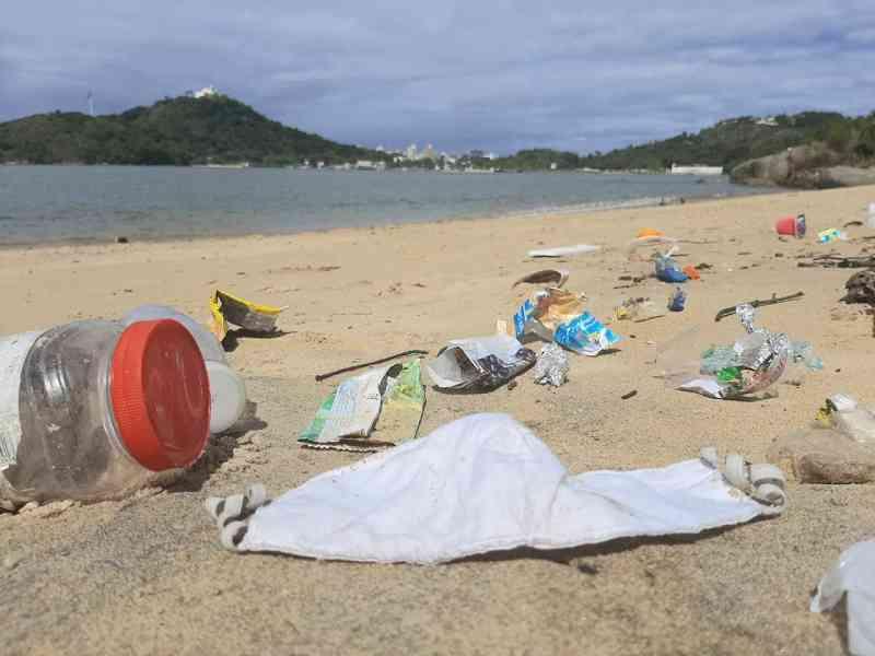 Descarte irregular de máscaras durante pandemia coloca animais marinhos em risco no ES