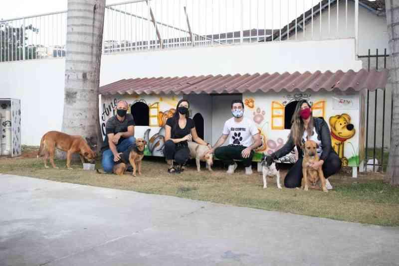 Moradores de Mariana (MG) criam 'cãodomínio' para cães de rua