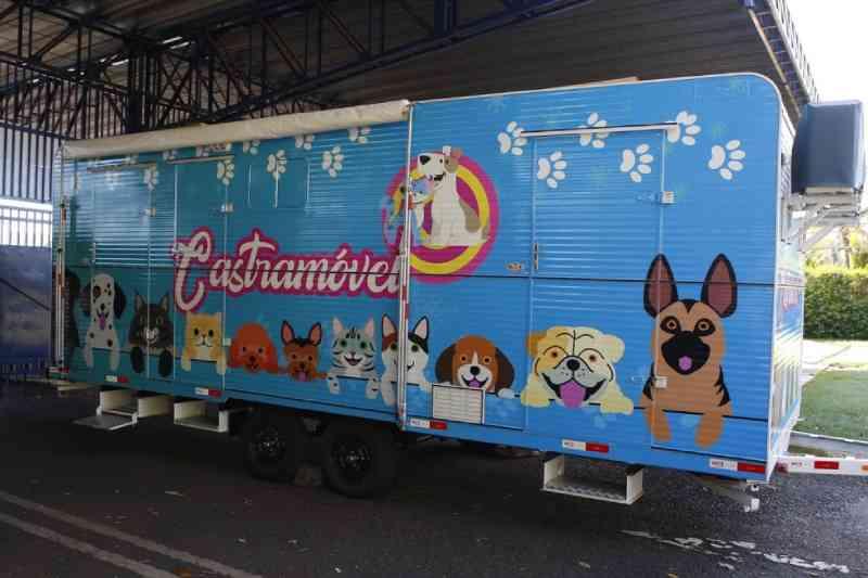 Uberlândia (MG) ganha 'Castramóvel' para atendimento de animais de pequeno porte
