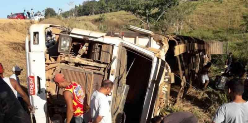 Motorista e animais morrem em acidente com caminhão na Transamazônica